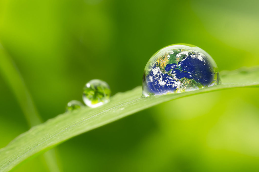environment-friendly mold remediation in Hoover