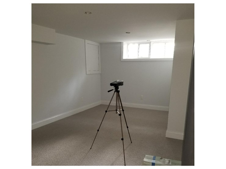 clean home after mold removal in danbury