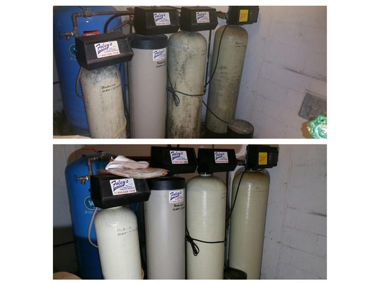 tanks mold removal in danbury