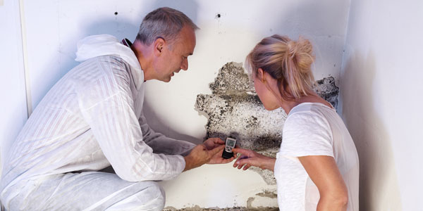 our staff doing mold testing in Tyrone