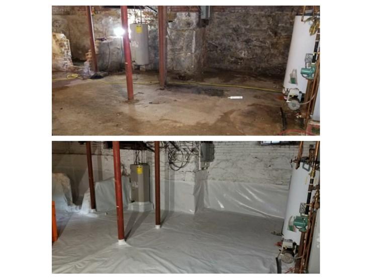 mold removal in danbury