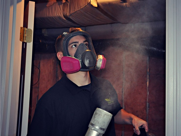 our staff doing mold removal services in Charlotte