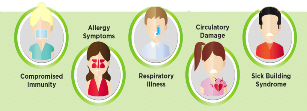 common signs of mold exposure